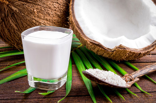 Bulk Wholesale Organic Coconut Milk Cream 22% Fat